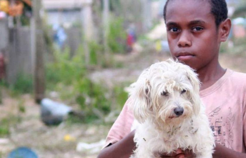 Boy Holding White Dog In Vanuatu
